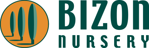 Bizon Nursery